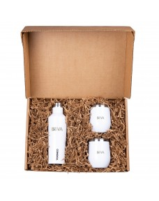 Corkcicle Canteen & Stemless Gift Set